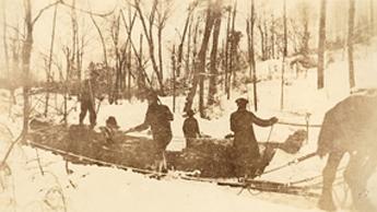 1919 skidding logs