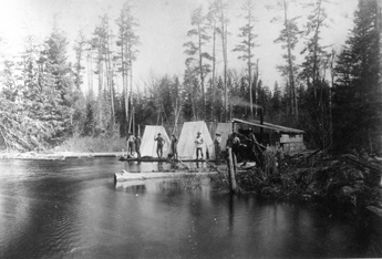 Logging on Buck River 1894